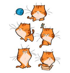 set of cute orange tabby cat characters in vector image