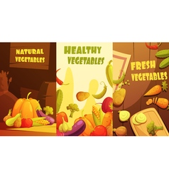 Organic Vegetables Vertical Banners Cartoon Poster vector image vector image