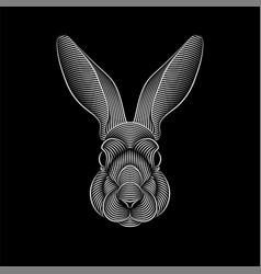 engraving stylized rabbit portrait on black vector image