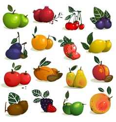 Fruits and Berries Collection vector