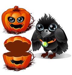 raven and box of pumpkins halloween characters vector image