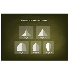 Different Types of Population Pyramids vector