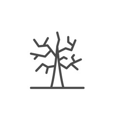 Dry tree line outline icon vector