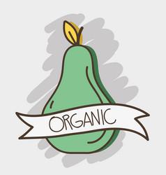 Fresh avocado organ fruit with ribbon vector