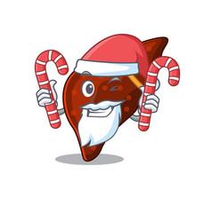 Friendly human cirrhosis liver in santa cartoon vector
