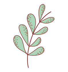 leaves drawing isolated vector image