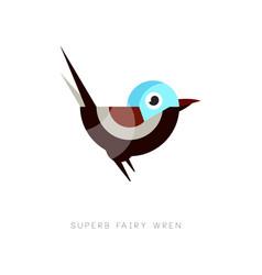 colored superb fairy wren icon abstract bird vector image