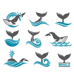 abstract whale icons set vector image vector image
