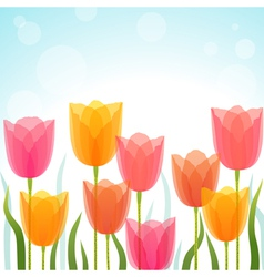 Tulip background vector image vector image