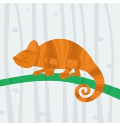 Chameleon sitting on a branch vector