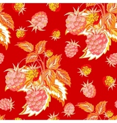 pattern red pink raspberry hand painted fruit vector image