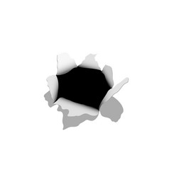 realistic holes in paper isolated template vector image