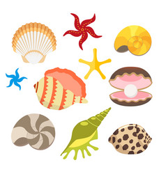 set of sea shells oysters with pearls and sea vector image vector image