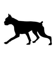 Silhouette of a boxer breed dog vector