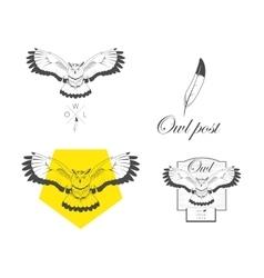 Logo owl design vector image