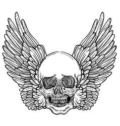 line art of angel wings scary skull vector image