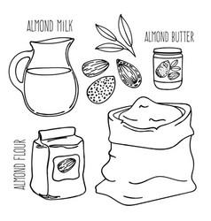 Almond meal vegetarian paleo diet vector