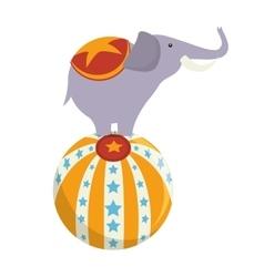 Elephant circus ball show vector