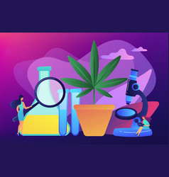 marihuana products innovation concept vector image