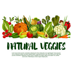 Poster of vegetables or veggies harvest vector