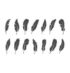 set black feather symbols on white background vector image