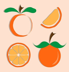 set of orange icon vector image