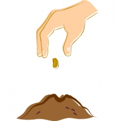 hand dropping a seed vector image vector image