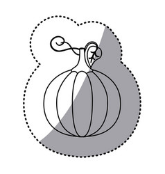 figure pumpkin vegetable icon vector image vector image