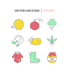 Autumn icons collection vector