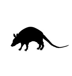 black silhouette of armadillo isolated image vector image