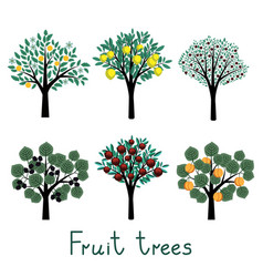 Fruit trees set vector image