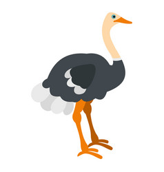 Ostrich icon isolated vector