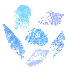 Set seashells on white background seashells vector