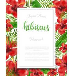 summer flyer design with tropical plants and vector image