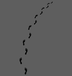 trail human bare footsteps vector image