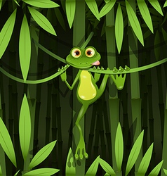 frog in a jungle vector image vector image