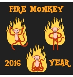 New Year Monkey in the fire vector image
