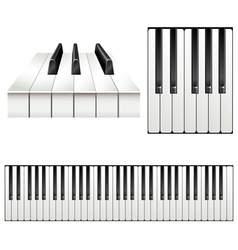 Piano key set vector image