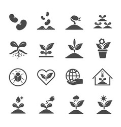 plant and sprout icons icon design vector image