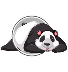 a panda sticker template vector image