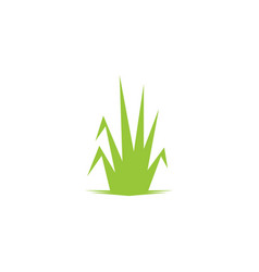 Grass leaf landscape icon element vector