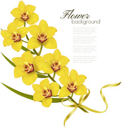 Holiday flowers background with yellow orchids and vector