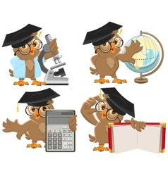 Set owls teachers vector image
