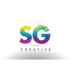 Sg s g colorful letter origami triangles design vector