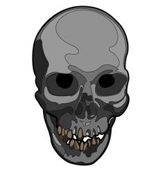 Skull artwork vector image