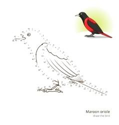 Maroon oriole bird learn to draw vector