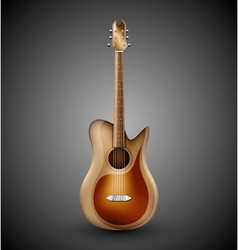Isolated acoustic guitar vector image vector image