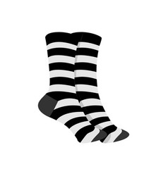 black white striped socks fashion style item vector image
