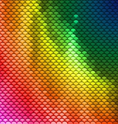 Colorful scales pattern vector image