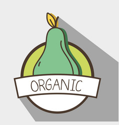 Fresh pear organ fruit symbol vector